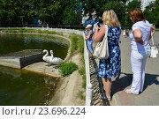 Купить «Посетители парка любуются белыми лебедями на Лианозовских прудах. Лианозовский парк культуры и отдыха. Москва», эксклюзивное фото № 23696224, снято 6 августа 2016 г. (c) lana1501 / Фотобанк Лори