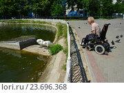 Купить «Женщина-инвалид любуетя белыми лебедями на Лианозовских прудах. Лианозовский парк. Москва», эксклюзивное фото № 23696368, снято 6 августа 2016 г. (c) lana1501 / Фотобанк Лори