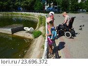 Купить «Люди любуются белыми лебедями на Лианозовских прудах. Лианозовский парк. Москва», эксклюзивное фото № 23696372, снято 6 августа 2016 г. (c) lana1501 / Фотобанк Лори
