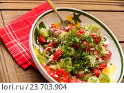 Купить «Bowl of Marinated Greek Salad with Red Napkin, Tilted View», фото № 23703904, снято 26 августа 2014 г. (c) easy Fotostock / Фотобанк Лори