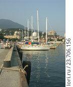 Купить «Морской порт в Ялте», эксклюзивное фото № 23706156, снято 20 июня 2018 г. (c) Михаил Карташов / Фотобанк Лори