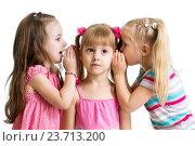 Купить «kids girlfriends sharing a secret isolated», фото № 23713200, снято 13 октября 2013 г. (c) Оксана Кузьмина / Фотобанк Лори