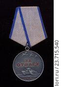 Медаль за отвагу. Стоковое фото, фотограф Константин Болотников / Фотобанк Лори