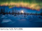 Купить «Зимний ночной пейзаж с лесом и полярным сиянием», фото № 23721096, снято 20 февраля 2018 г. (c) Оксана Владимировна Грачева / Фотобанк Лори