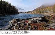 Купить «Река Катунь на Алтае / River Katun in Altai mountains», видеоролик № 23730864, снято 28 сентября 2016 г. (c) Serg Zastavkin / Фотобанк Лори