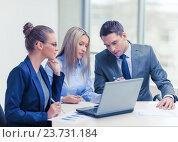 Купить «business team with laptop having discussion», фото № 23731184, снято 9 ноября 2013 г. (c) Syda Productions / Фотобанк Лори