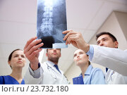 Купить «group of medics with spine x-ray scan at hospital», фото № 23732180, снято 3 декабря 2015 г. (c) Syda Productions / Фотобанк Лори