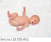 Купить «Новорожденный мальчик лежит на кровати», фото № 23733412, снято 12 декабря 2014 г. (c) Андрей Некрасов / Фотобанк Лори