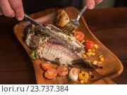 Купить «Grilled dorado fish», фото № 23737384, снято 3 ноября 2015 г. (c) Jan Jack Russo Media / Фотобанк Лори