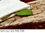 Книга с закладкой из листка розы. Стоковое фото, фотограф Olga Goryunova / Фотобанк Лори