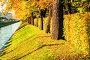 Осенний пейзаж - Лебяжья канавка в Санкт-Петербурге и осенние деревья в солнечную погоду, фото № 23765392, снято 3 октября 2016 г. (c) Зезелина Марина / Фотобанк Лори