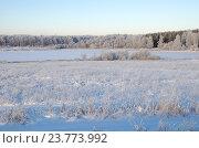 Купить «Зимний подмосковный пейзаж», эксклюзивное фото № 23773992, снято 29 декабря 2014 г. (c) Елена Коромыслова / Фотобанк Лори