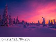 Купить «Зимний пейзаж. Деревья в снегу на фоне заката», фото № 23784256, снято 4 января 2015 г. (c) Оксана Владимировна Грачева / Фотобанк Лори