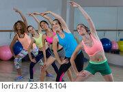 Купить «Group of fitness team performing stretching exercise», фото № 23814104, снято 28 апреля 2016 г. (c) Wavebreak Media / Фотобанк Лори