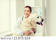 Купить «happy doctor with retriever dog at vet clinic», фото № 23815824, снято 19 июля 2015 г. (c) Syda Productions / Фотобанк Лори