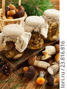 Купить «Консервированные грибы в стеклянных банках», фото № 23816816, снято 11 сентября 2016 г. (c) Надежда Мишкова / Фотобанк Лори