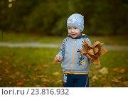 Мальчик держит букет из листьев (2016 год). Редакционное фото, фотограф Елена Ганненко / Фотобанк Лори