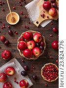 Купить «Красные яблоки, сливы и брусника на деревянном фоне», фото № 23824776, снято 14 сентября 2016 г. (c) Сергей Вольченко / Фотобанк Лори