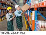 Купить «Warehouse workers checking the inventory», фото № 23824912, снято 23 марта 2016 г. (c) Wavebreak Media / Фотобанк Лори