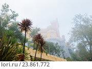 Дворец Пена (Palacio Nacional da Pena) окутанный сильным туманом. Осенний день. Синтра. Португалия (2016 год). Стоковое фото, фотограф E. O. / Фотобанк Лори