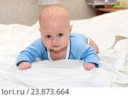 Купить «Малыш лежит на животе», фото № 23873664, снято 24 февраля 2015 г. (c) Андрей Некрасов / Фотобанк Лори