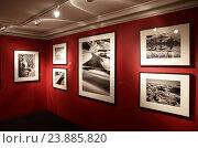 Купить «Выставка фотографа Себастио Сальгадо в Москве», эксклюзивное фото № 23885820, снято 12 марта 2016 г. (c) Дмитрий Неумоин / Фотобанк Лори