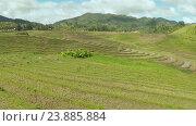 Купить «Рисовые поля на Филиппинах», видеоролик № 23885884, снято 1 августа 2016 г. (c) Mikhail Davidovich / Фотобанк Лори