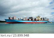Купить «Огромные грузовое судно Maersk Line в бухте Пилот, Mount Maunganui, Новая Зеландия», фото № 23899948, снято 4 октября 2016 г. (c) Евгений Дробитько / Фотобанк Лори