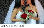 Купить «Wedding lesbians girl in bridal dress.», видеоролик № 23924368, снято 21 октября 2016 г. (c) Gennadiy Poznyakov / Фотобанк Лори