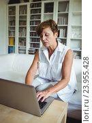 Senior woman using laptop in living room, фото № 23955428, снято 1 июля 2016 г. (c) Wavebreak Media / Фотобанк Лори