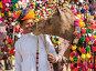 Традиционные украшения верблюда  в Пушкаре, фото № 23970768, снято 22 ноября 2012 г. (c) photoff / Фотобанк Лори