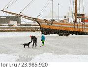 Купить «Каток в Северной гавани  в Хельсинки. Игра с собакой», фото № 23985920, снято 9 января 2016 г. (c) Валерия Попова / Фотобанк Лори