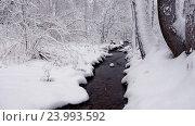 Купить «Заснеженный ручей зимой в снежном лесу / Small creek in winter snowy forest among snow banks», видеоролик № 23993592, снято 29 октября 2016 г. (c) Serg Zastavkin / Фотобанк Лори