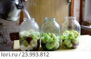 Купить «Woman prepares conserved stewed fruit for winter», видеоролик № 23993812, снято 23 июля 2016 г. (c) Володина Ольга / Фотобанк Лори