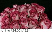 Вращающиеся розовые розы. Стоковое видео, видеограф Video Kot / Фотобанк Лори