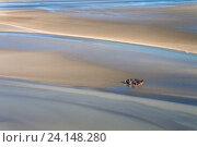 Купить «Побережье моря во время отлива, вид с вершины горы Святого Михаила, Франция», фото № 24148280, снято 26 октября 2011 г. (c) Виталий Батанов / Фотобанк Лори