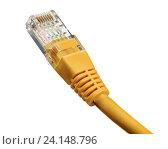 Купить «Сетевой кабел, изолированный на белом фоне», фото № 24148796, снято 28 октября 2016 г. (c) Александр Лычагин / Фотобанк Лори