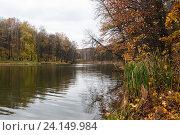 Купить «Осенний пейзаж с прудом осенью пасмурным днёмосенним днём», эксклюзивное фото № 24149984, снято 11 октября 2016 г. (c) Игорь Низов / Фотобанк Лори