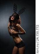 Купить «Сексуальная брюнетка в эротическом нижнем белье на темном фоне», фото № 24150772, снято 24 августа 2016 г. (c) Гурьянов Андрей / Фотобанк Лори
