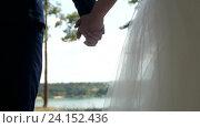 Купить «Свадебная пара держится за руки», видеоролик № 24152436, снято 6 ноября 2016 г. (c) Константин Шишкин / Фотобанк Лори