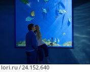 Купить «father and daughter in oceanarium», фото № 24152640, снято 2 ноября 2016 г. (c) Майя Крученкова / Фотобанк Лори
