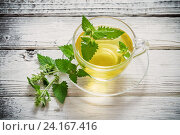 Купить «green melissa herbal tea in glass cup on wooden background», фото № 24167416, снято 5 июля 2016 г. (c) Майя Крученкова / Фотобанк Лори