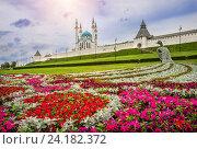Купить «Цветы Казани», фото № 24182372, снято 21 июля 2015 г. (c) Baturina Yuliya / Фотобанк Лори