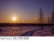 Зимняя дорога в тайге на закате, фото № 24199680, снято 22 января 2017 г. (c) Оксана Владимировна Грачева / Фотобанк Лори