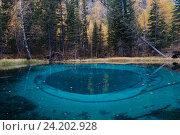 Купить «Необычное голубое озеро в горах Алтая. Россия», фото № 24202928, снято 27 сентября 2016 г. (c) Liseykina / Фотобанк Лори