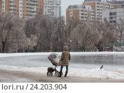 Купить «Мама стоит с коляской на берегу пруда в зимнем парке города Москвы, Россия», фото № 24203904, снято 11 ноября 2016 г. (c) Николай Винокуров / Фотобанк Лори