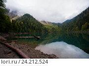 Утро на озере Малая Рица в Абхазии. Стоковое фото, фотограф Матвей Солодовников / Фотобанк Лори