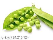 Зеленый горох на белом фоне. Стоковое фото, фотограф Андрей Черников / Фотобанк Лори
