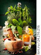 Травы и пряности, ступка и пестик, фото № 24216216, снято 3 октября 2016 г. (c) Наталия Кленова / Фотобанк Лори