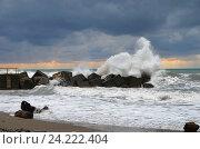 Купить «Чёрное море, шторм, волна разбивается о камни», эксклюзивное фото № 24222404, снято 21 сентября 2016 г. (c) Dmitry29 / Фотобанк Лори